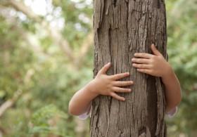 Lezing zelf natuur ontwikkelen in Brabant